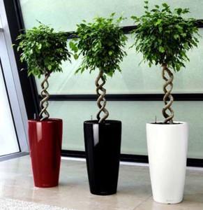 vasi con sistema di auto irrigazione calestani