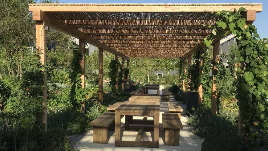 Bamboo : la soluzione ecologica per la tua casa | Calestani