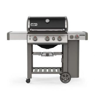 Barbecue Genesis II E330